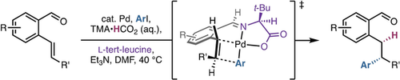 A Transient‐Directing‐Group Strategy Enables Enantioselective Reductive Heck Hydroarylation of Alkenes