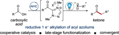 Combined Photoredox and Carbene Catalysis for the Synthesis of Ketones from Carboxylic Acids