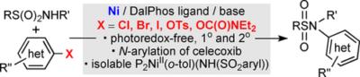 Nickel‐Catalyzed Cross‐Coupling of Sulfonamides With (Hetero)aryl Chlorides
