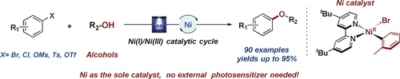 Light‐Promoted Nickel Catalysis: Etherification of Aryl Electrophiles with Alcohols Catalyzed by a NiII‐Aryl Complex