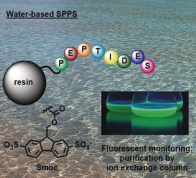 Sustainable Peptide Synthesis Enabled by a Transient Protecting Group