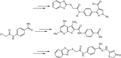 Synthesis and biological evaluation of some heterocyclic scaffolds based on the multifunctional N‐(4‐acetylphenyl)‐2‐chloroacetamide