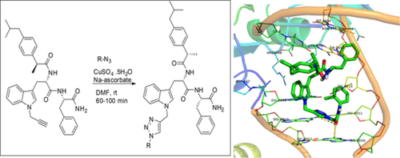 Synthesis, biological evaluation, and docking study of a series of 1,4‐disubstituted 1,2,3‐triazole derivatives with an indole‐triazole‐peptide conjugate