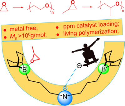 High‐Activity Organocatalysts for Polyether Synthesis via Intramolecular Ammonium Cation Assisted SN2 Ring‐Opening Polymerization