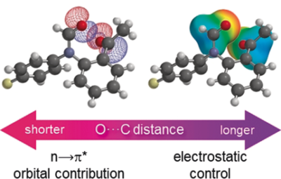 Reconciling Electrostatic and n→π* Orbital Contributions in Carbonyl Interactions