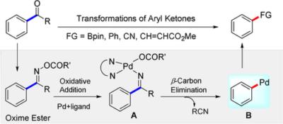 Transformations of Aryl Ketones via Ligand‐Promoted C−C Bond Activation