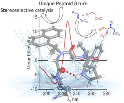 Unique β‐Turn Peptoid Structures and Their Application as Asymmetric Catalysts