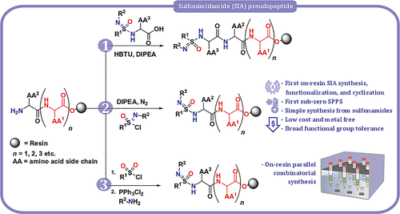 Solid Phase Synthesis of Sulfonimidamide Pseudopeptides and Library Generation