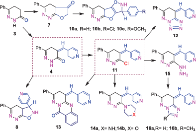 Synthesis of 1,2,4‐triazolopyridazines, isoxazolofuropyridazines, and tetrazolopyridazines as antimicrobial agents
