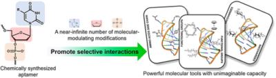 Nucleic Acid Aptamers for Molecular Diagnostics and Therapeutics: Advances and Perspectives