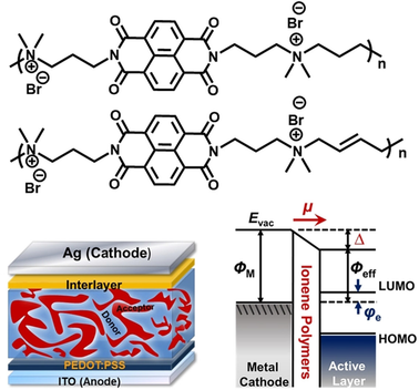 Naphthalene‐Diimide‐Based Ionenes as Universal Interlayers for Efficient Organic Solar Cells