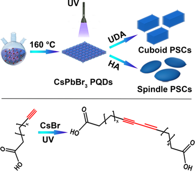 Self‐Assembly of Perovskite CsPbBr3 Quantum Dots Driven by a Photo‐Induced Alkynyl Homocoupling Reaction