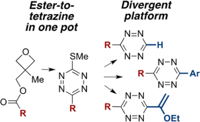 Divergent Synthesis of Monosubstituted and Unsymmetrical 3,6‐Disubstituted Tetrazines from Carboxylic Ester Precursors