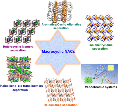 Synthetic Macrocycle‐Based Nonporous Adaptive Crystals for Molecular Separation