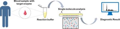 Single‐Molecule Analysis Determines Isozymes of Human Alkaline Phosphatase in Serum