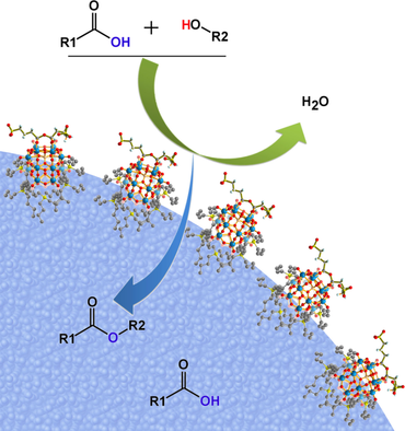 Modulation of Self‐Separating Molecular Catalysts for Highly Efficient Biomass Transformations