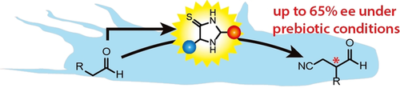 Prebiotically Plausible Organocatalysts Enabling a Selective Photoredox α‐Alkylation of Aldehydes on the Early Earth