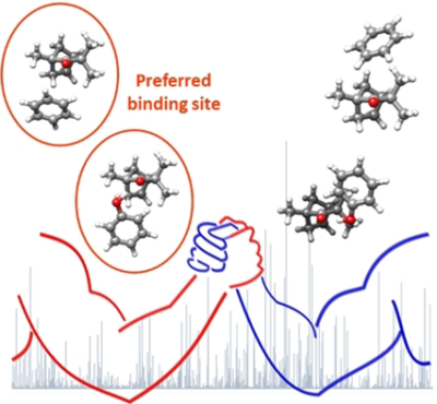 Binding Site Switch by Dispersion Interactions: Rotational Signatures of Fenchone–Phenol and Fenchone–Benzene Complexes