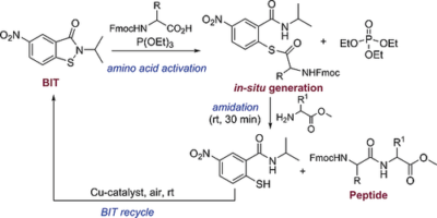 Benzoisothiazolone (BIT): A Fast, Efficient, and Recyclable Redox Reagent for Solid Phase Peptide Synthesis