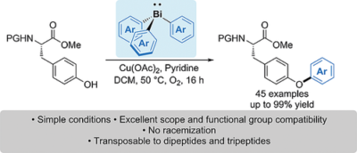 Copper‐Promoted O‐Arylation of the Phenol Side Chain of Tyrosine Using Triarylbismuthines