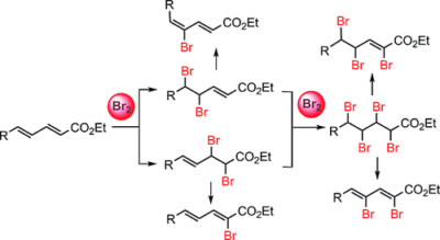 Chemoselective Bromination of Dienoates