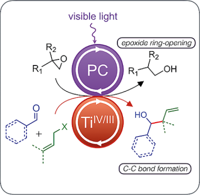 Shining Light on TiIV Complexes: Exceptional Tools for Metallaphotoredox Catalysis