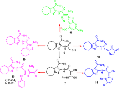 Synthesis and cytotoxic activity of some new heterocycles incorporating cyclohepta[b]thiophene‐3‐carboxamide derivatives
