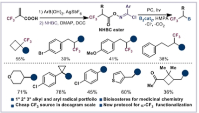 Decarboxylative Borylation of Stabilized and Activated Carbon Radicals