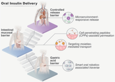 Oral Insulin Delivery Platforms: Strategies To Address the Biological Barriers