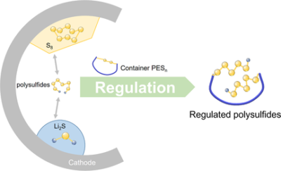 Direct Intermediate Regulation Enabled by Sulfur Containers in Working Lithium–Sulfur Batteries