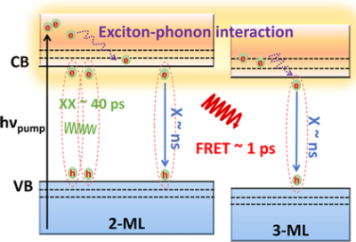 Suppressing Strong Exciton–Phonon Coupling in Blue Perovskite Nanoplatelet Solids by Binary Systems