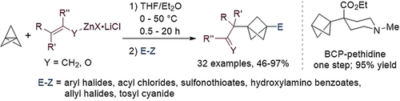 Highly Regioselective Addition of Allylic Zinc Halides and Various Zinc Enolates to [1.1.1]Propellane