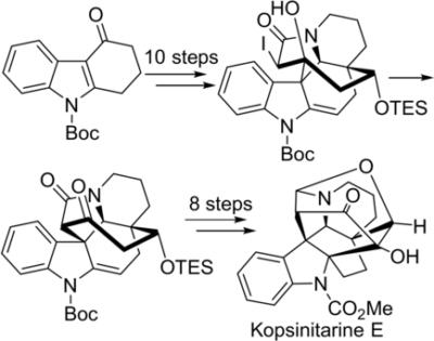 Total Synthesis of KopsinitarineE