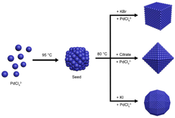 Separating Growth from Nucleation for Facile Control over the Size and Shape of Palladium Nanocrystals