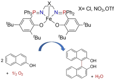 FeIII and FeII Phosphasalen Complexes: Synthesis, Characterization, and Catalytic Application for 2‐Naphthol Oxidative Coupling