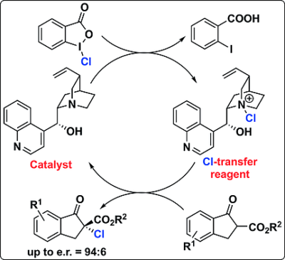 Asymmetric α‐Chlorination of β‐Keto Esters Using Hypervalent Iodine‐Based Cl‐Transfer Reagents in Combination with Cinchona Alkaloid Catalysts
