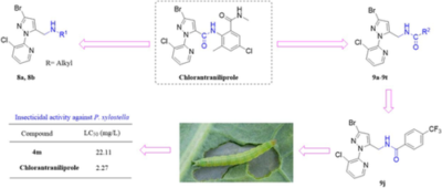 Design, synthesis and insecticidal‐activity evaluation of N‐pyridylpyrazolo‐5‐methyl amines and its derivatives