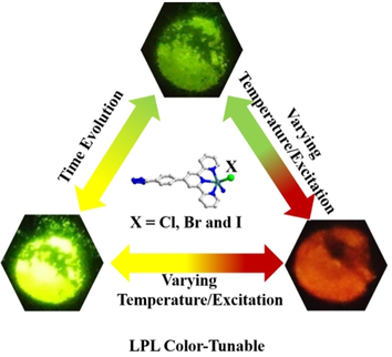 Multi‐Mode Color‐Tunable Long Persistent Luminescence in Single‐Component Coordination Polymers