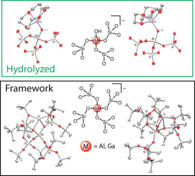 Siloxyaluminate and Siloxygallate Complexes as Models for Framework and Partially Hydrolyzed Framework Sites in Zeolites and Zeotypes