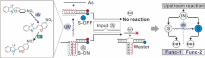 Optochemical Control of DNA‐Switching Circuits for Logic and Probabilistic Computation