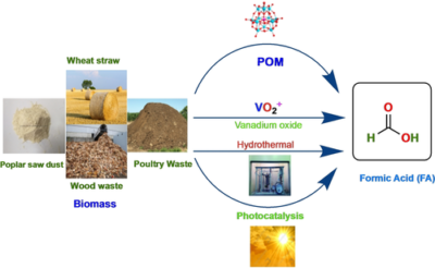 Oxidative Transformation of Biomass into Formic Acid
