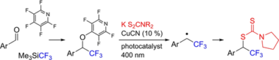 Synthesis of Trifluoromethylated Dithiocarbamates via Photocatalyzed Substitution Reaction: Pentafluoropyridine as Activating Reagent