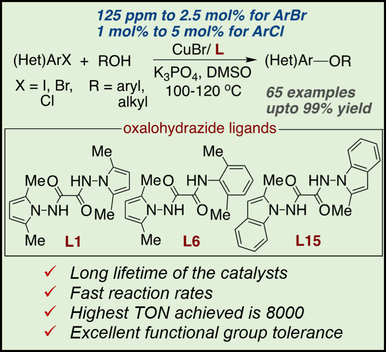Oxalohydrazide Ligands for Copper‐Catalyzed C−O Coupling Reactions with High Turnover Numbers
