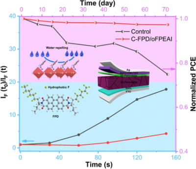 Dually‐Passivated Perovskite Solar Cells with Reduced Voltage Loss and Increased Super Oxide Resistance