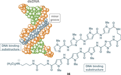 Natural and Synthetic Oligoarylamides: Privileged Structures for Medical Applications