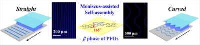 Large‐Scale Rapid Positioning of Hierarchical Assemblies of Conjugated Polymers via Meniscus‐Assisted Self‐Assembly