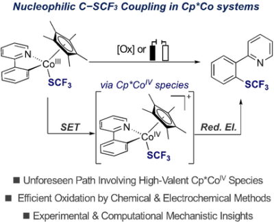 Redefining the Mechanistic Scenario of Carbon−Sulfur Nucleophilic Coupling via High‐Valent Cp*CoIV Species