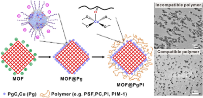 Coating the Right Polymer: Achieving Ideal Metal–Organic Framework Particle Dispersibility in Polymer Matrixes Using a Coordinative Crosslinking Surface Modification Method