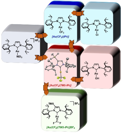 Synthesis of Gold(I)−Trifluoromethyl Complexes and their Role in Generating Spectroscopic Evidence for a Gold(I)−Difluorocarbene Species
