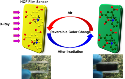 Radiochromic Hydrogen-Bonded Organic Frameworks for X-ray Detection